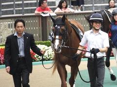 20150627 東京11R 夏至S ランドマーキュリー 03
