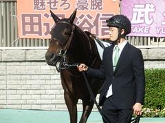 20181125 東京4R 2歳メイクデビュー ホウオウヒミコ 12