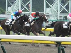 20170625 東京1R 3歳牝馬未勝利 プンメリン 27
