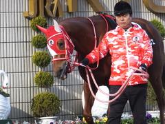 20170114 京都10R 北大路特別 4歳上牝馬1000万下 レーヌドブリエ 02