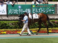 20170506 東京5R 3歳牝馬500万下 ビルズトレジャー 04