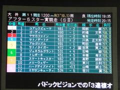 20140827 大井11R 重賞 メリーウェザー 01