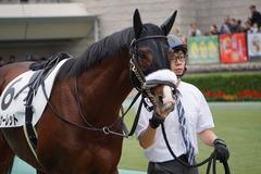 20191103 東京9R 3歳上2勝クラス ロジスカーレット 03