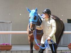 20170225 阪神4R 3歳未勝利 サテンドール 10