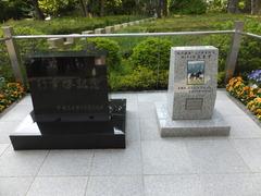 20140503 東京11R 青葉賞 ショウナンラグーン 99