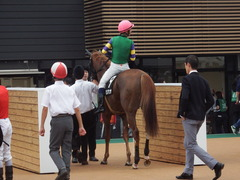 20180930 中山9R サフラン賞 2歳牝馬500万下 ポリアンサ 22