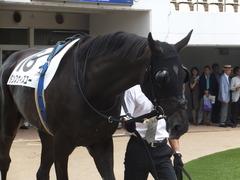 20170909 中山3R 3歳未勝利 ダンスウィズユー 07