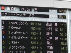 20161010 東京10R オクトーバーS(1600) ショウナンラグーン 01