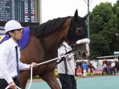 20140915 大井11R 東京記念 ユーロビート 07