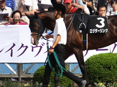 20150921 中山9R 白井特別  ロジダーリング 04