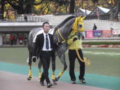 20121118 東京 1000万下のツボネちゃん 1