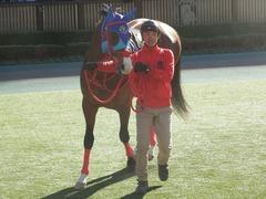 20190127 東京9R セントポーリア賞(500) アドマイヤスコール 13