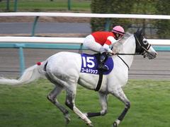 20151227 中山10R 有馬記念(G1) ゴールドシップ 18