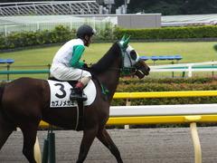 20150621 東京5R 2歳メイクデビュー  カズノメガミ 13