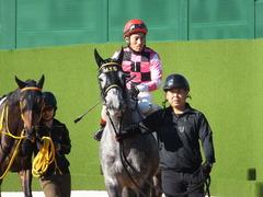 20141214 中山6R 2歳メイクデビュー  グローリアスレイ 14