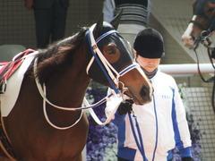 20180331 阪神3R 3歳未勝利 テンノカガヤキ 12