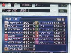 20181006 東京1R 2歳未勝利 サノノドン 01