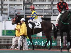 20151224 大井2R 2歳新馬 マルカンヒラリー 14