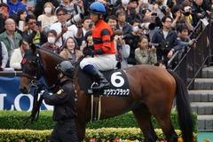 20191124 東京10R ウェルカムS (3勝) オウケンブラック 16