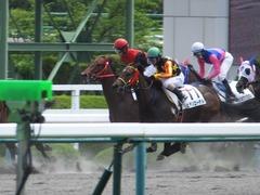 20170603 阪神3R 3歳未勝利 フェアチャイルド 27