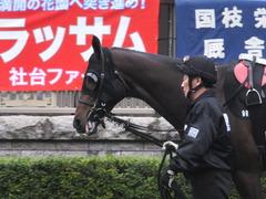 20151123 東京9R 伊勢佐木特別 ヴィルトグラーフ 05