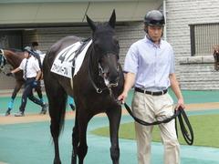 20170625 東京6R 3歳未勝利 ファインパープル 09