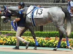 20180609 東京6R 3歳牝馬未勝利 ウェディングベール 09