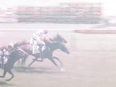 20140531 東京6R オウケンブラック 18