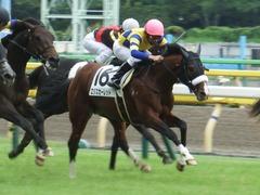 20180616 東京6R 3歳未勝利 ロジスカーレット 22