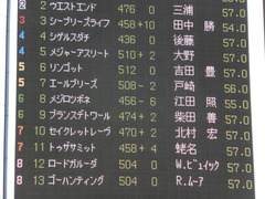 20131116 東京 メジロツボネ01