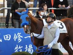 20161210 中山12R (500) ヤマニンリュウセイ 07