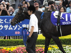 20141102 東京11R天皇賞(秋) ラブイズブーシェ 01