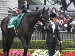 20151123 東京11R 東スポ杯2歳S(G2) プロディガルサン 04
