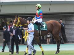20151031 東京11R アルテミスS(G3) テイケイレーヴ 06
