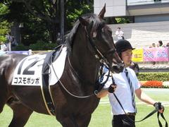 20150628 東京6R 3歳未勝利 コスモポッポ 05