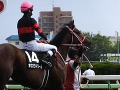 20170624 函館10R 湯川特別(500) ホウオウドリーム 31