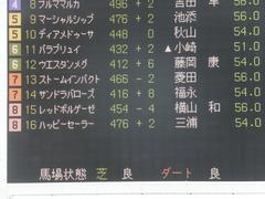 20140907 札幌5R サンドラバローズ 01