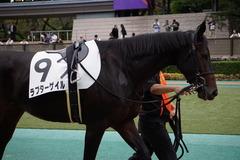 20191026 東京12R 3歳上1勝クラス ラプターゲイル 12