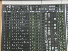 20141005 新潟5R レーヌドブリエ 02