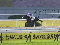 20151121 京都1R 2歳未勝利 アドマイヤムテキ 14