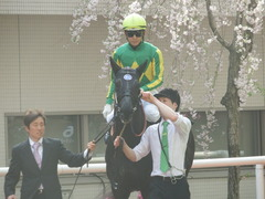 20180401 阪神11R 大阪杯(G1) サトノノブレス 07