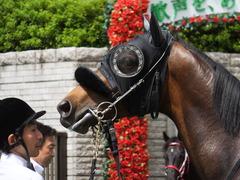 20140629 東京10R ゴールウェイ 07