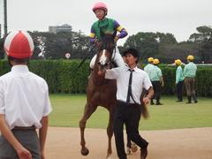 20180930 中山9R サフラン賞 2歳牝馬500万下 ポリアンサ 21
