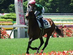 20180520 東京4R 3歳未勝利 ルフィーナ 15