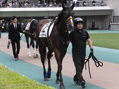 20161022 東京12R (1000) ノーモアゲーム 05
