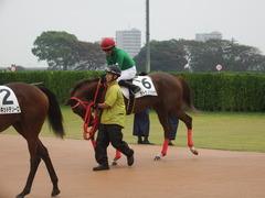 20180929 中山5R 2歳牝馬メイクデビュー オトナノジジョウ 25