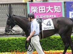 20170625 東京6R 3歳未勝利 ファインパープル 04