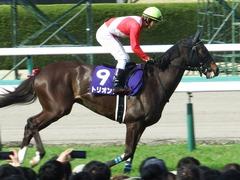 20180401 阪神11R 大阪杯(G1) トリオンフ 09