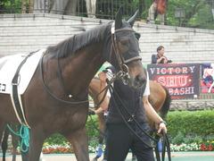 20190608 東京6R 3歳牝馬未勝利 ホウオウヒミコ 09