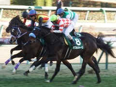 20180114 中山11R 京成杯(G3) ダブルシャープ 19
